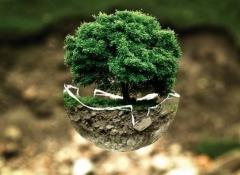 7 dolog, amit a hétköznapokban tehetünk a zöldebb jövőért