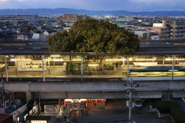 700 éves fa köré épült - Íme a világ egyik legkülönlegesebb vasútállomása