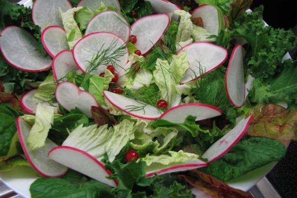 Színes saláta tál