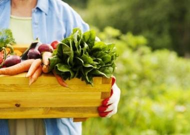 Bio ételekkel a szervezet méregtelenítéséért