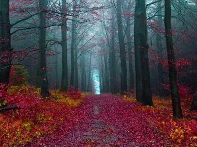 Milyen a spirituális beállítottságunk?